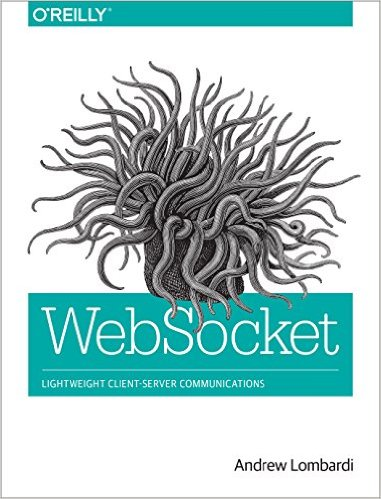 Best Socket.io Books To Master The Technology