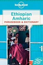 Best Amharic Books That Will Hook You