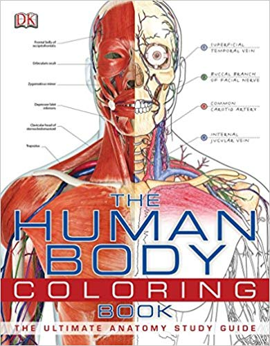 Best Anatomy Books That Should Be On Your Bookshelf