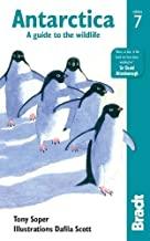 Best Antarctica Books Worth Your Attention