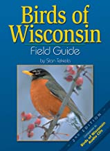 Best Bird Identification Books That You Need