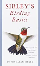 Best Birding Books Worth Your Attention