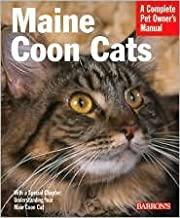 Best Cat Books Everyone Should Read