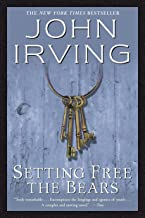 Best John Irving Books Worth Your Attention