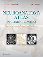 Best Neuroanatomy Books You Should Read